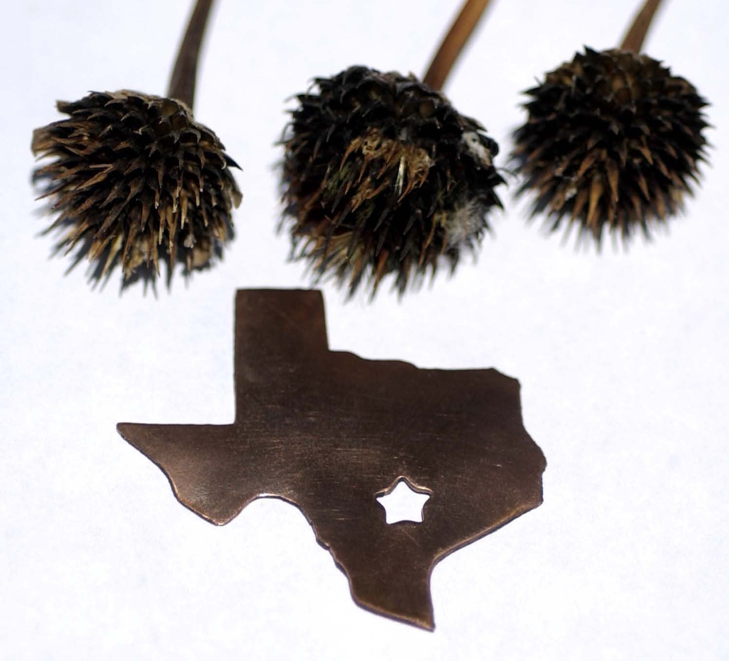 Texas State with Star Perfect Cute Blanks Cutout for Metalworking Stamping Texturing Blank Variety of Metals