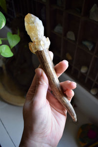 ELK ANTLER & CITRINE MAGICK WAND | CRYSTAL WAND | ANTLER WAND