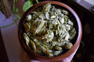 HOP FLOWERS | HUMULUS LUPULUS | ORGANICALLY CULTIVATED