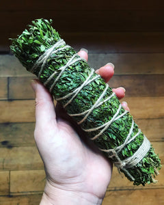 WILD CHAPARRAL (CREOSOTE) SMOKE WAND | MEDICINE OF THE ANCIENTS