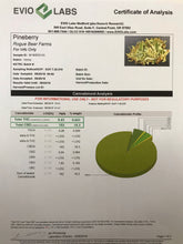 Load image into Gallery viewer, PINEBERRY | CBDa 15.5% | THE SACRED HERB | CBD FLOWER | HEMP FLOWER
