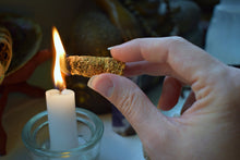 Load image into Gallery viewer, PALO SANTO INCENSE CONES | HOLY WOOD | ENERGY CLEANSING