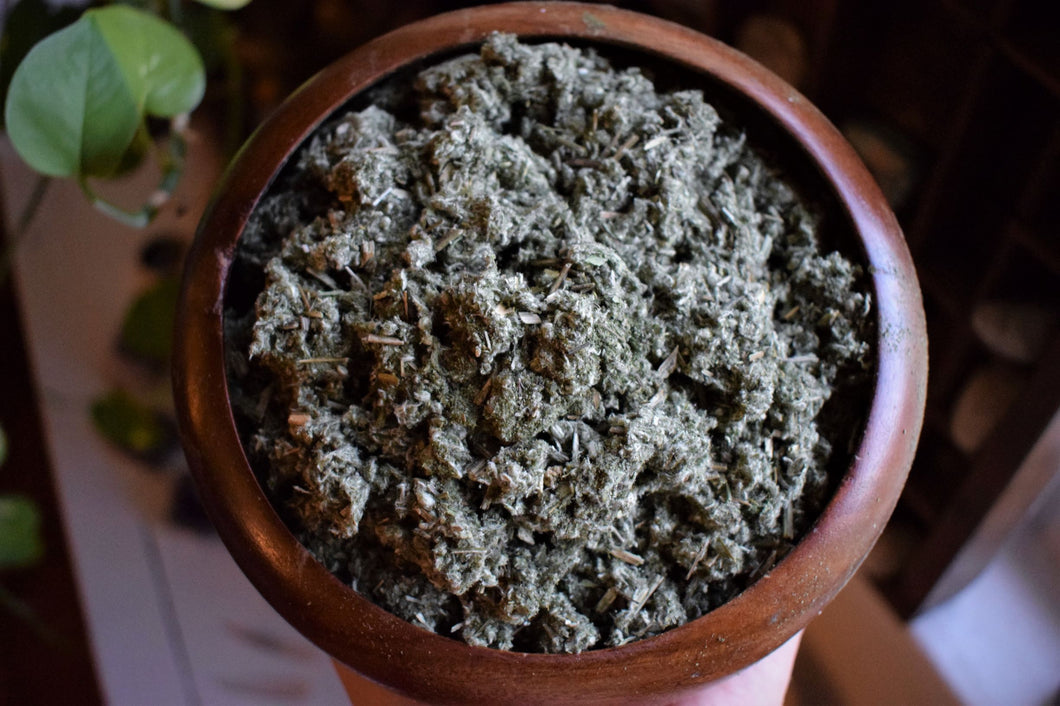 MUGWORT | ARTEMISIA VULGARIS | ORGANICALLY CULTIVATED