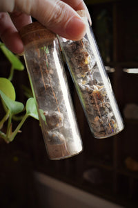 PALO SANTO RESIN | BURSERA GRAVEOLENS | HAND-HARVESTED