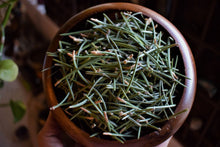Load image into Gallery viewer, PINON PINE NEEDLES | PINUS EDULIS | PINE MAGICK | PINON INCENSE