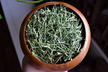 Load image into Gallery viewer, WILD PINON PINE NEEDLE TEA
