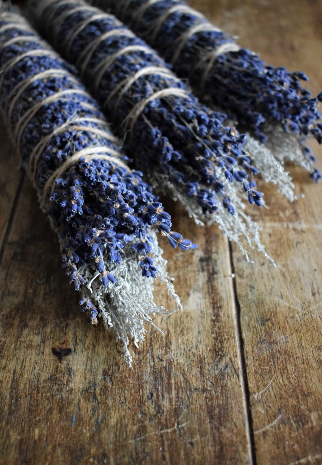 WILD SAGEBRUSH + LAVENDER RITUAL SMOKE WAND | CANYONLANDS WILD SAGEBRUSH | HAND-HARVESTED