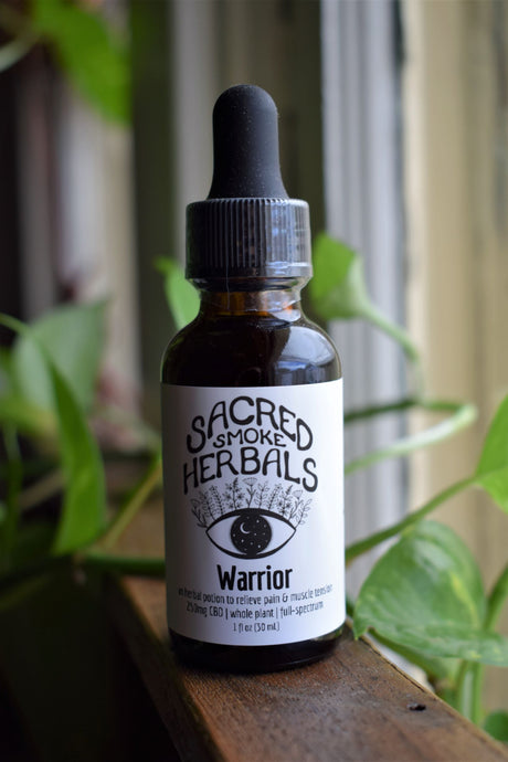 WARRIOR TINCTURE | AN HERBAL POTION | PEDICULARIS DENSIFLORA TINCTURE