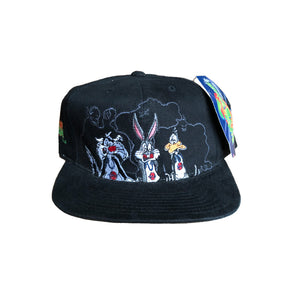 Vintage 1996 American Needle Space Jam Family Snapback Hat Cap