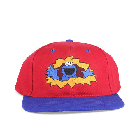 Vintage 1990s Sesame Street Cookie Monster Snapback Hat