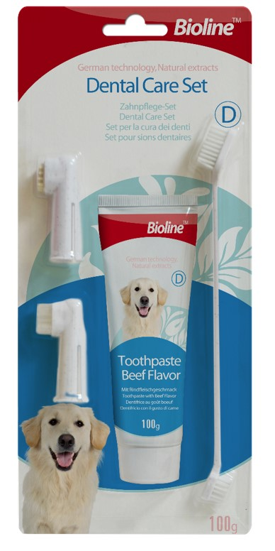 DENTAL CARE SET MINT