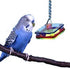 BIRD TOY HANGING ACYRLIC SQUARE WITH BEADS
