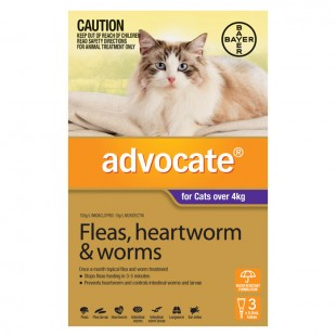 ADVOCATE FOR CATS OVER 4KG (6 PACK)