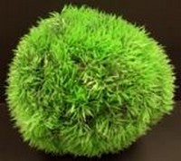 ORNAMENT PLASTIC PLANT BALL 18CM