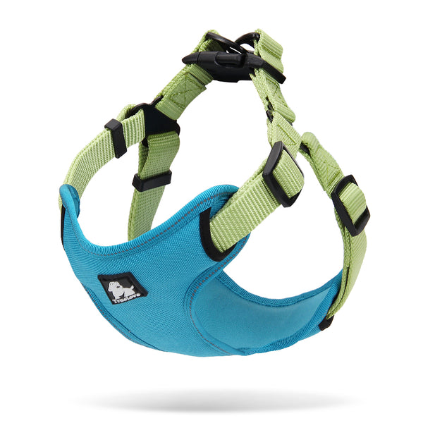 2 TONE HARNESS BLUE / GREEN SMALL