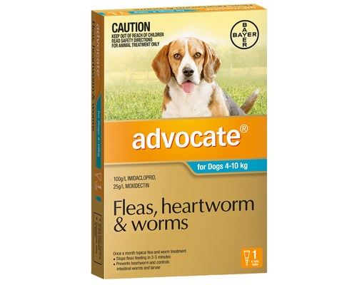 ADVOCATE FOR DOGS 4 - 10KGS (1 PACK)