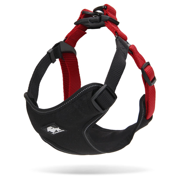 2 TONE HARNESS BLACK / RED SMALL