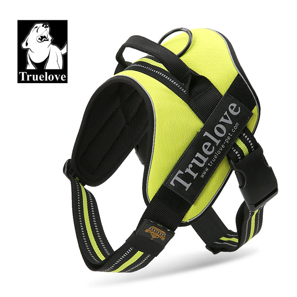 OUTDOOR HARNESS FLURO GREEN SMALL