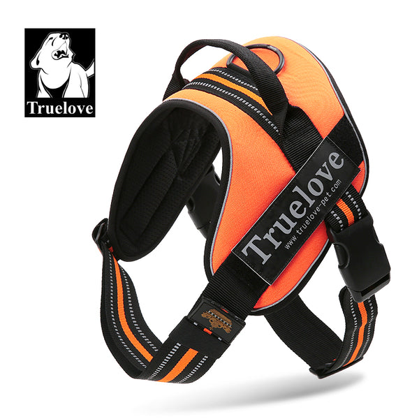 OUTDOOR HARNESS FLURO ORANGE LARGE