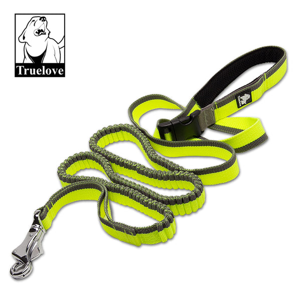WAIST LEAD AND COLLAR BUNGEE GREEN / GREY MEDIUM