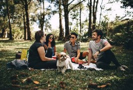 A group of young adults enjoy some drinks on the lawn with their small dog.