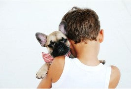 A boy cradles his french bulldog puppy, who is wearing American Flag bowtie.