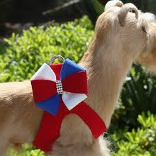 Luxury Dog Harness USA Red White Blue