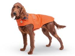 Dog Coat Orange Visibility in Country