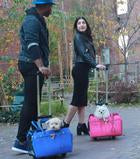 Luxury Dog Carrier Blue Airline Approved Wheels
