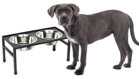 Modern Flat Top Table Elevated Dog Diner Double Bowls Black