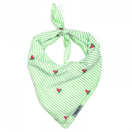 Dog Bandana Embroidered Green Stripe Watermelon