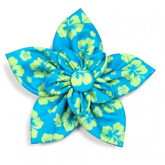 Dog Collar attachment Aloha Turquoise Flower