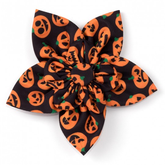 Dog Collar attachment Halloween Jack-O-Lantern