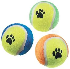 Dog Toy Balls Paw Print 5 Pack Medium