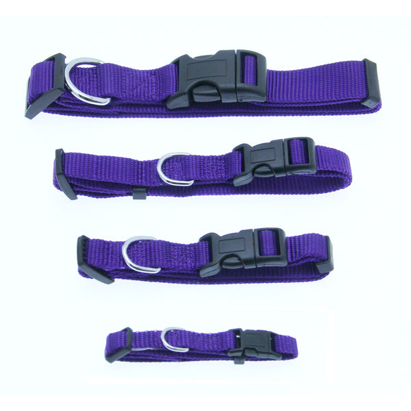 Barking Basics Dog Collar Purple Large