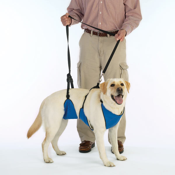 Guardian Gear Lift & Leash 4-In-1 Dog Harness