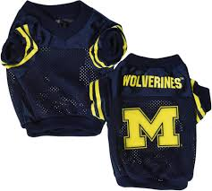 Michigan Wolverines Dog Jersey NCAA