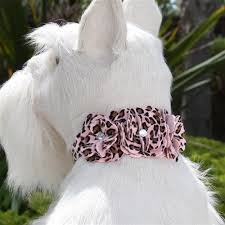Luxury Dog Collar Pink Cheetah Couture Flowers Swarovski® Crystals Ultrasuede®