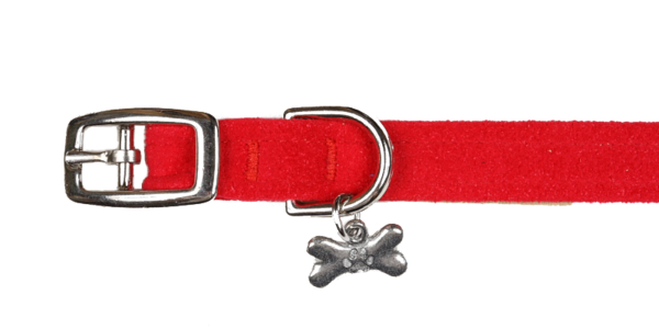 Luxury Dog Collar with Bone Charm Ultrasuede®