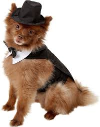 Dog Black Tuxedo Formal Tails, Bowtie Collar & Top Hat