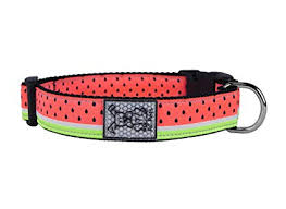 Dog Collar Watermelon by RC Pets Small