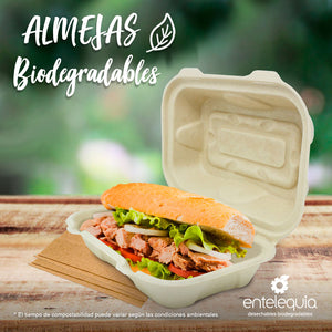 Almeja Rectangular Paja de Trigo CR - Desechable Biodegradable Entelequia 500 pzas