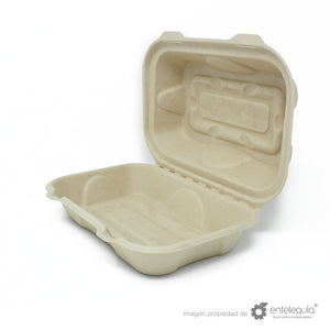 Almeja Rectangular Paja de Trigo CR - Desechable Biodegradable Entelequia