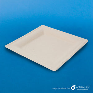 "Plato cuadrado Paja de Trigo 6"" PC6 - Desechable Biodegradable Entelequia 500 pzas"