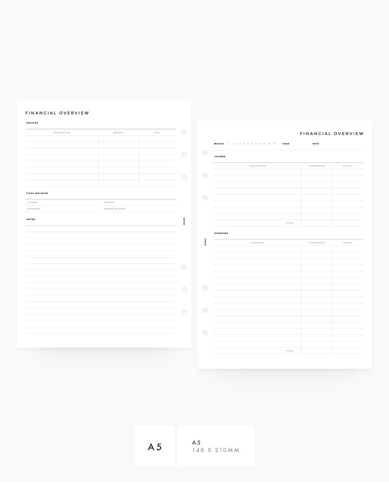 MN038 - Fillable - Financial Overview PRINTABLE Inserts