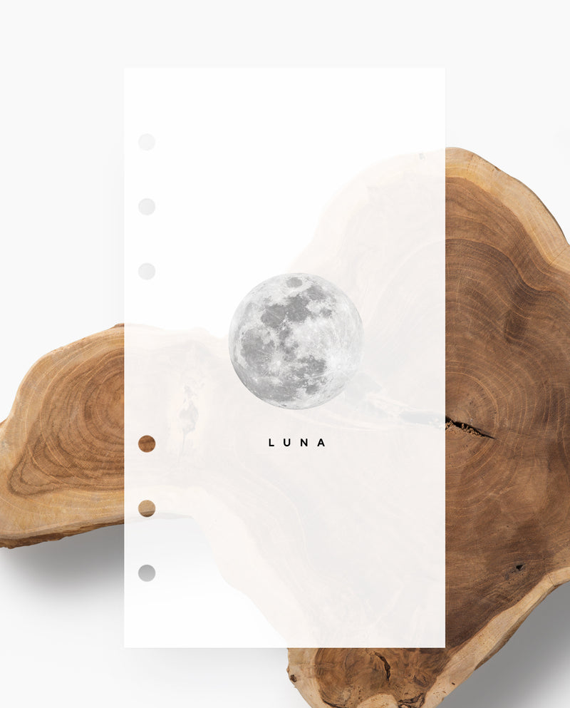 D001 - Luna - Dashboard