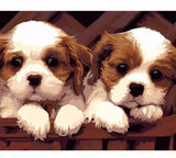 PAIR OF PUPPIES - DIY PAINT BY NUMBERS KIT