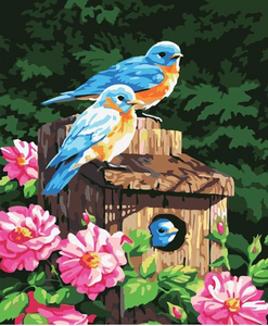 BIRDS IN MAILBOX - DIY PAINT BY NUMBERS KIT