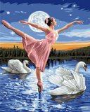 LADY IN SWAN LAKE - DIY PAINT BY NUMBERS KIT