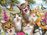 PLAYFUL CATS - DIAMOND PAINTING KIT